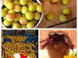 Fruits of autumn  – oder – Schnelle Mirabellen-Konfitüre