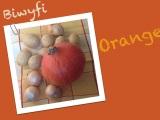 Kürbis, nicht zum Gruseln, sondern zum Löffeln ;-) – oder – Biwyfi:Orange