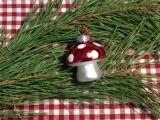 Warum ich ein Glückspilz bin – oder – Reich beschenkt, schon vor derWeihnachtszeit