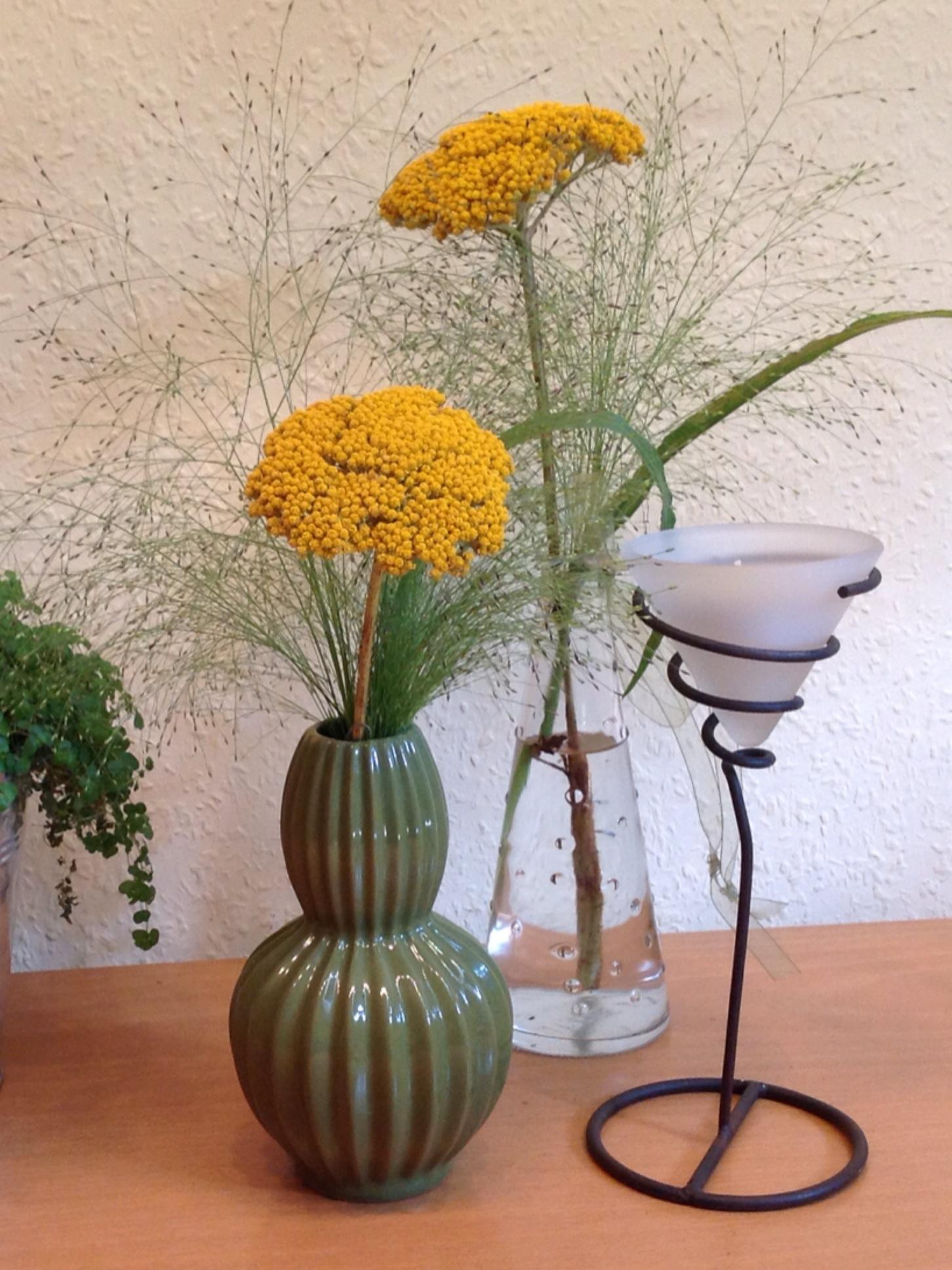 Wie vom Feldrand – oder – Friday-Flowerday #32/14