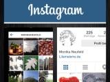 Warum es neuerdings so viele Instagram-Bilder bei mir gibt – oder – Von Juli-Juwelen und August-Augenblicken