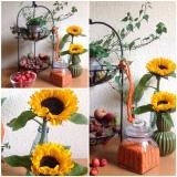 Friday-Flowerday – oder – Sonnenblumen und Früchte desHerbstes