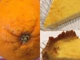 Ein kulinarisches Reisemitbringsel aus Köln: Orangentarte – oder – Köll'scheOrangentarte😉