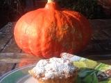 Große Kürbisliebe # 2 – oder – Kürbis-Muffins, süß undsaftig