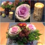 Friday-Flowerday – oder – Das ist dochKappes….