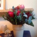Friday-Flowerday – oder – Amaryllis (die Dritte) undRosen