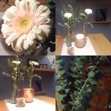 Friday-Flowerday – oder – Blumen versusBazillen