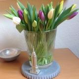 Friday-Flowerday – oder – Voll aufTulpe