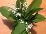 Friday-Flowerday – oder – Mai floral: Maiglöckchen undPfingstrosen