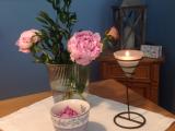 Friday-Flowerday – oder – Jetzt aber: Pfingstrosen, dieZweite