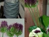 Friday-Flowerday – oder – Heutefremdgefreut