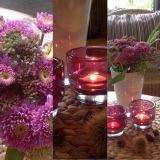 Friday-Flowerday – oder – Der Herbst istlila