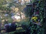 12tel-Blick im September – oder – Der Herbst istda