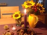 Friday-Flowerday – oder – Noch malSonnenblumen