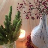 Friday-Flowerday – oder – Rot und Grün=Herbst