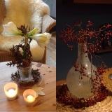 Friday-Flowerday – oder – Amaryllis in weiß und Beeren inrot