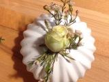 Friday-Flowerday – oder – Die letztenFreilandrosen