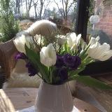 Friday-Flowerday – oder – Frühling trifftWinter