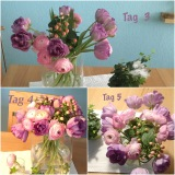 Friday-Flowerday – oder – GeschenkteBlümchen
