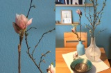 Friday-Flowerday – oder – Von großen und kleinenBlüten