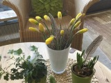 Friday-Flowerday – oder – Gelb und Grün: Die perfekte Frühlingskombination