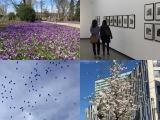 Von Fotos, Europa und schönen Highlights – oder – Ein Tag inDüsseldorf