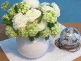 Friday-Flowerday – oder –Ranunkelwunder