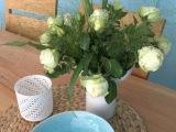 Friday-Flowerday – oder – Weiße Rosen undMeer