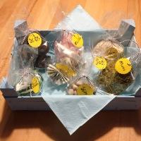 Von Mäusen, Moos und Kohle - oder - Wie man ein Geldgeschenk nett verpacken kann