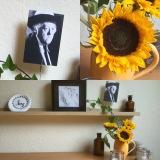 Friday-Flowerday – oder – Von Sonnenblumen und MissMarple