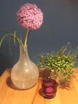 Friday – Flowerday – oder – Hundert lila Blütchen