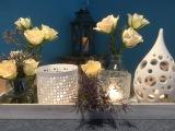 Friday-Flowerday – oder – Rosen undLicht