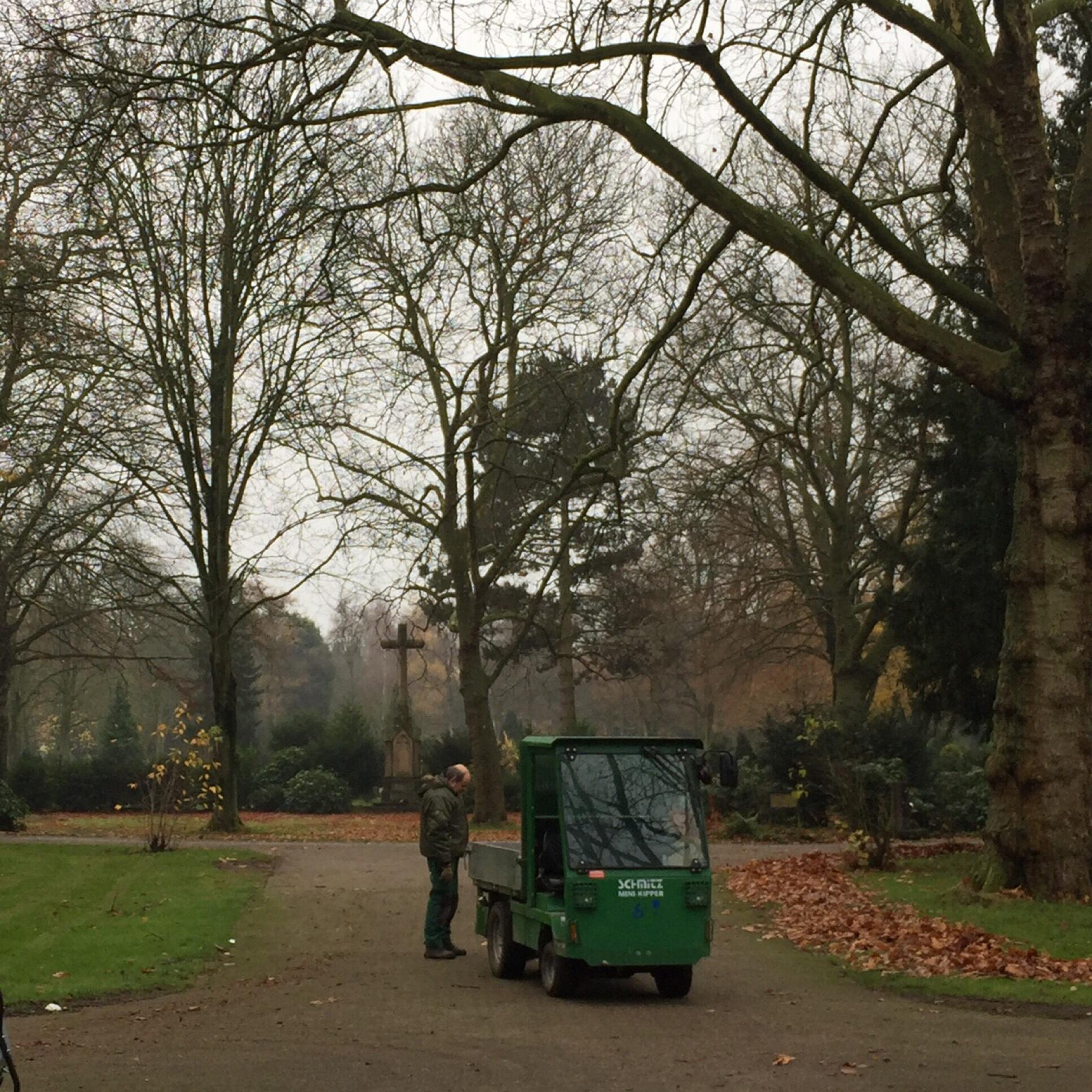 12tel-Blick November 2017 – oder – Von fleißigen Friedhofsgärtnern und kahlen Bäumen