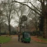 12tel-Blick November 2017 – oder – Von fleißigen Friedhofsgärtnern und kahlenBäumen