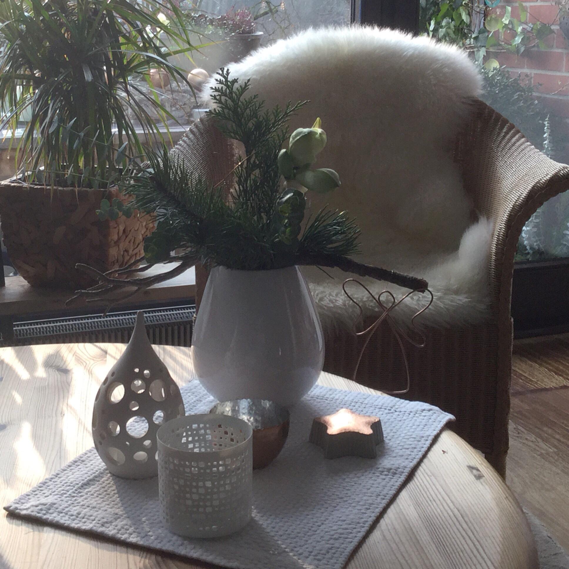 Friday-Flowerday – oder – Nun kommt sie weihnachtlich daher: Die Amaryllis