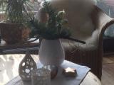 Friday-Flowerday – oder – Nun kommt sie weihnachtlich daher: DieAmaryllis