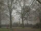 12tel- Blick im Dezember – oder  – Nebel und tristesGrau