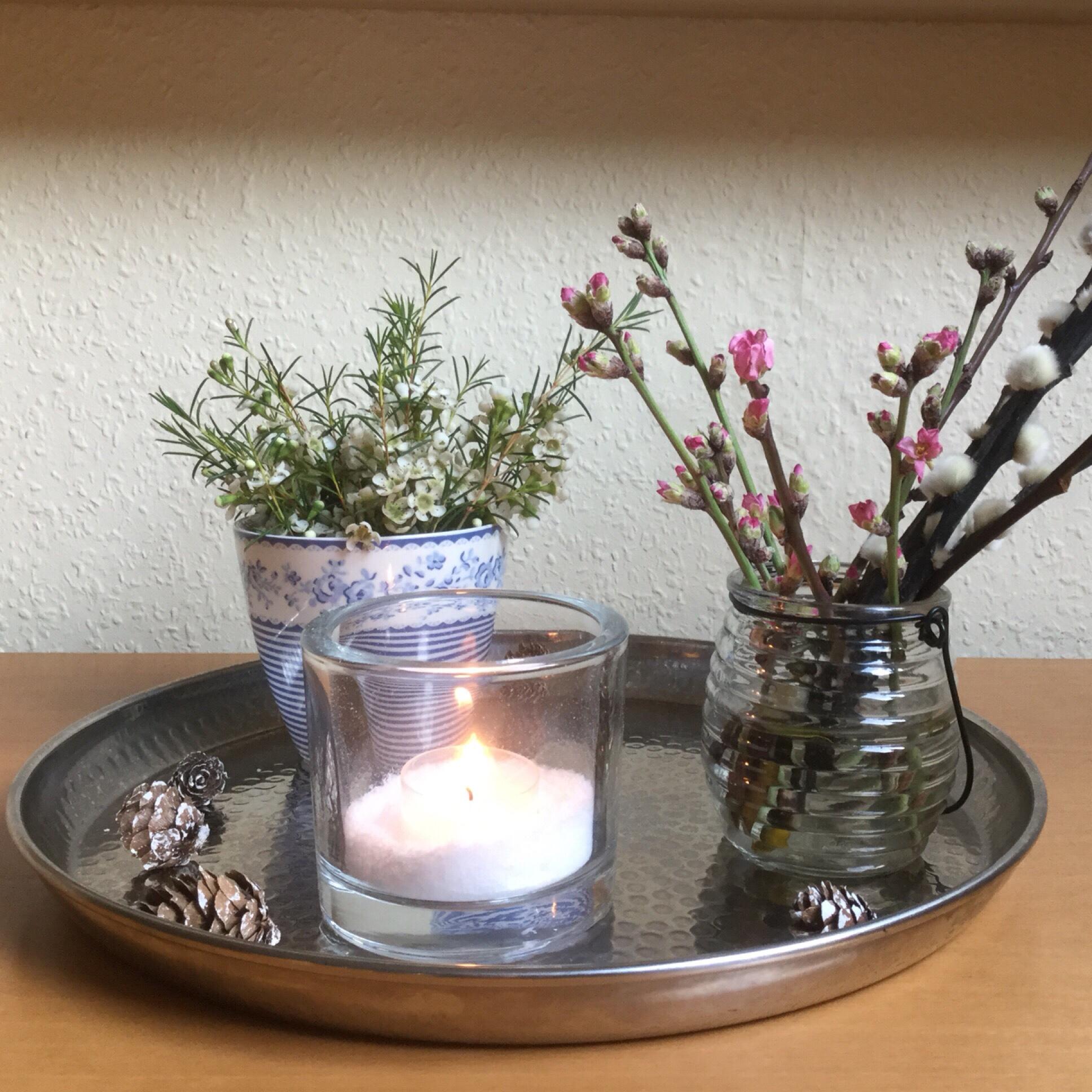 Friday-Flowerday – oder – Ein bisschen Winter, ein bisschen Frühling