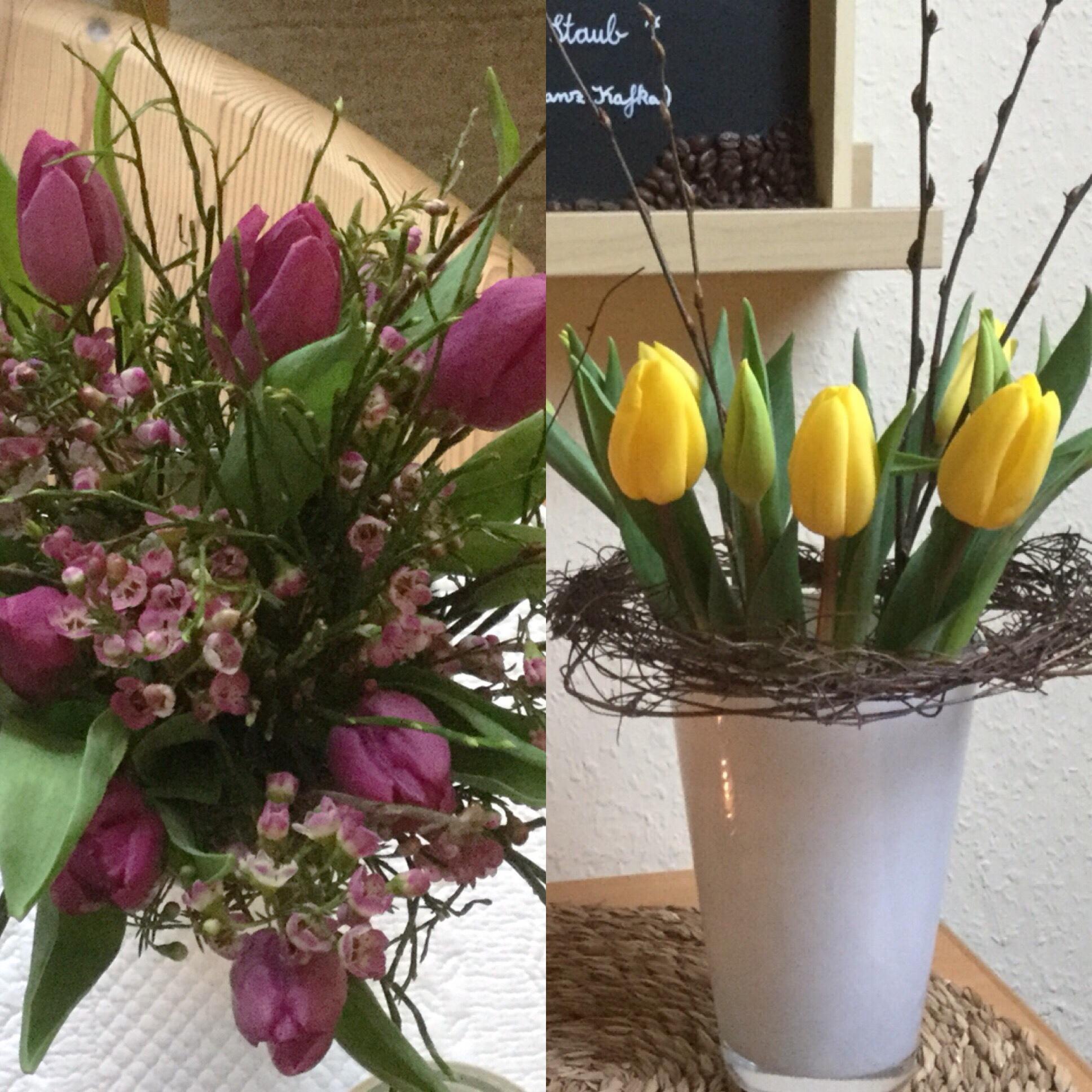 Friday-Flowerday – oder – Zwischen Winter und Frühling: Tulpen in gelb und lila