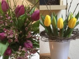 Friday-Flowerday – oder – Zwischen Winter und Frühling: Tulpen in gelb undlila