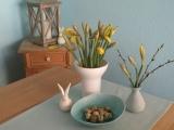 """Friday-Flowerday – oder – """"Lollorosso""""-Tulpen oder doch lieberOsterglocken"""