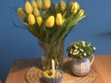 Friday-Flowerday  – oder –Frühlingsgelb