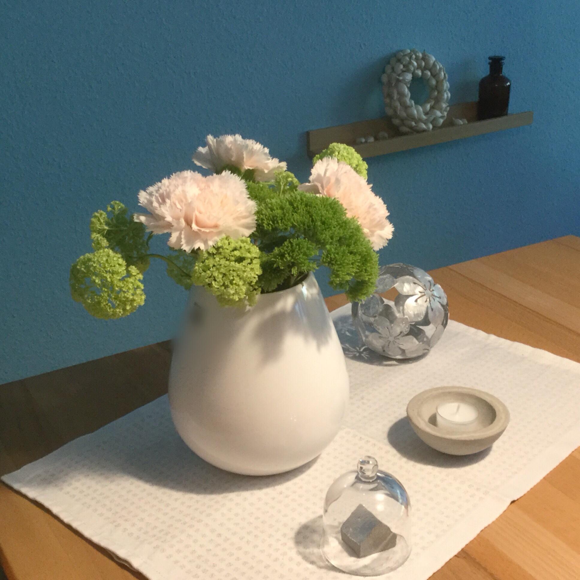Friday – Flowerday – oder – Warum nicht mal Nelken?