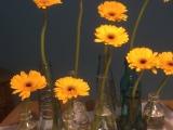 Friday-Flowerday – oder – Sonnengelb undhimmelblau