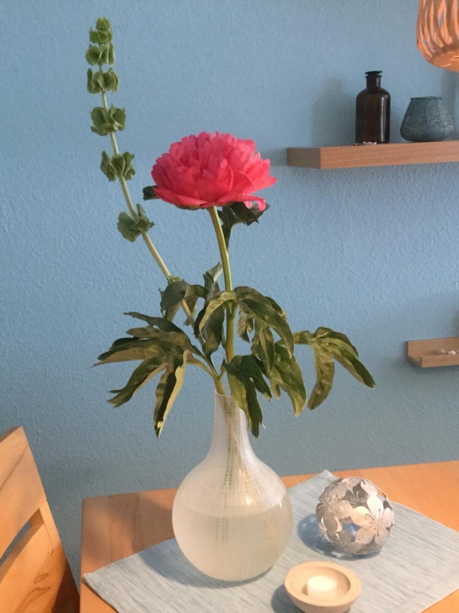 Friday-Flowerday - oder - Pünktlich zu Pfingsten