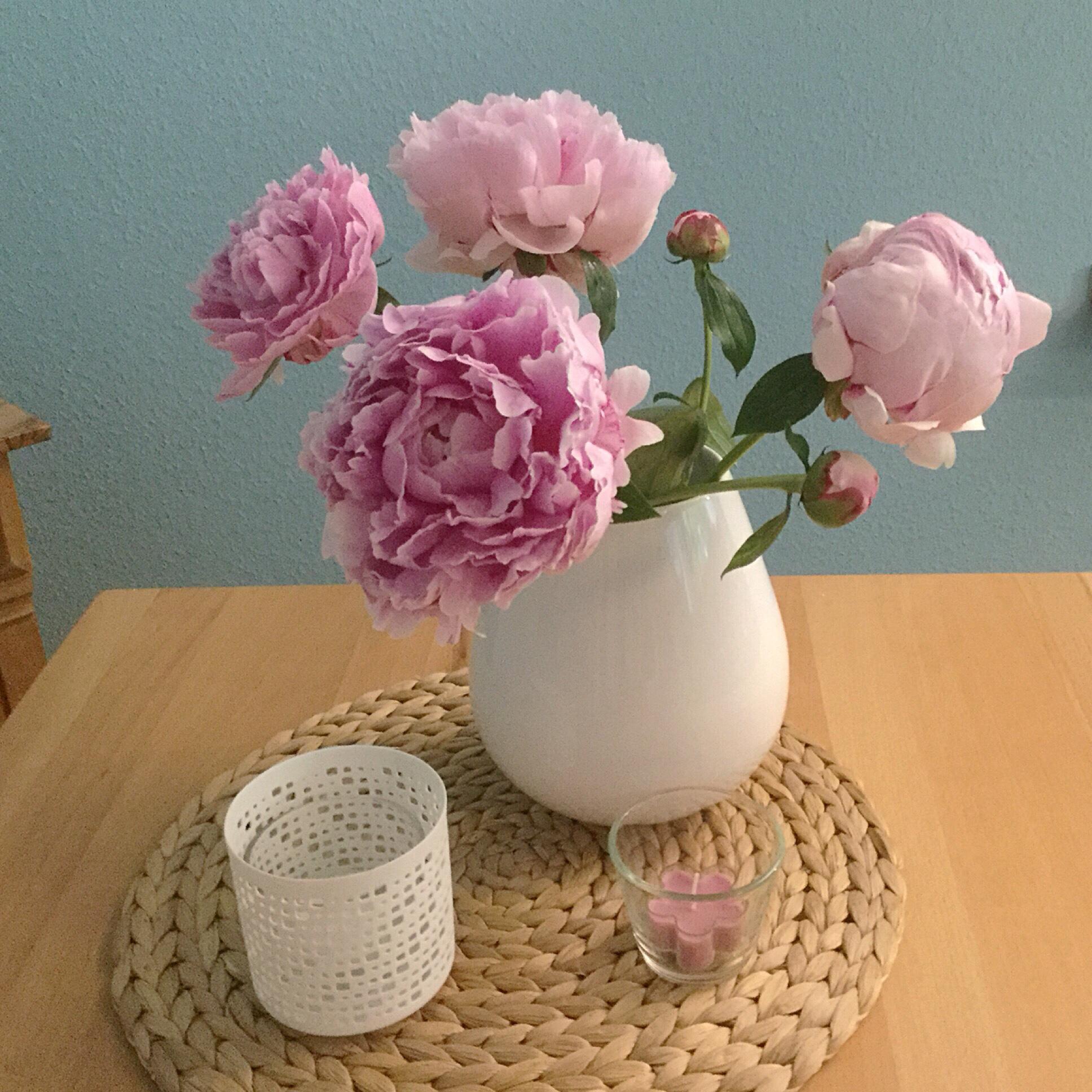 Friday-Flowerday – oder – Oh, wie schön sind Pfingstrosen