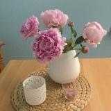 Friday-Flowerday – oder – Oh, wie schön sindPfingstrosen