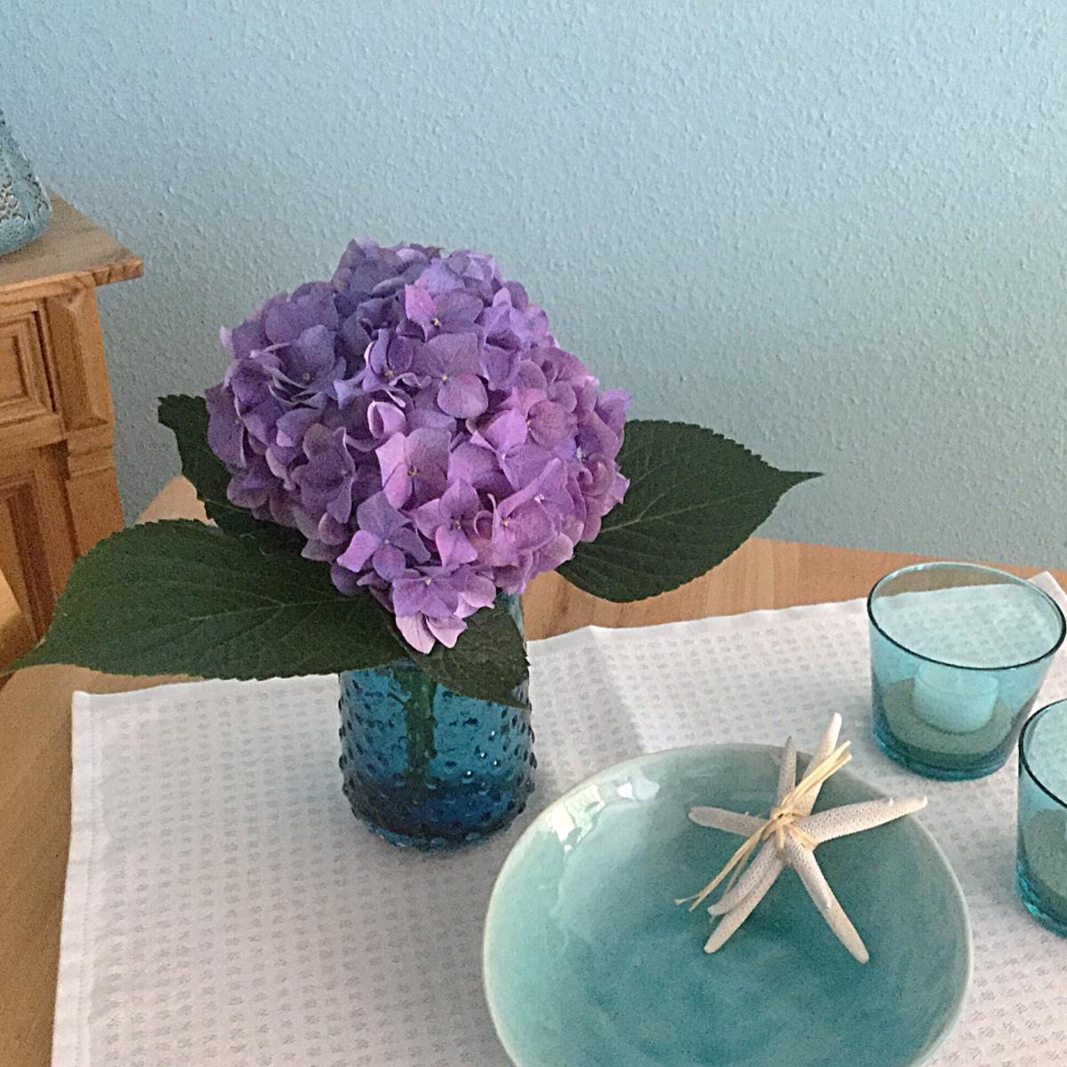 Kühles Blau: Hortensie Und Meer