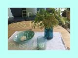 Friday- Flowerday – oder – Ein bisschen Grün musssein