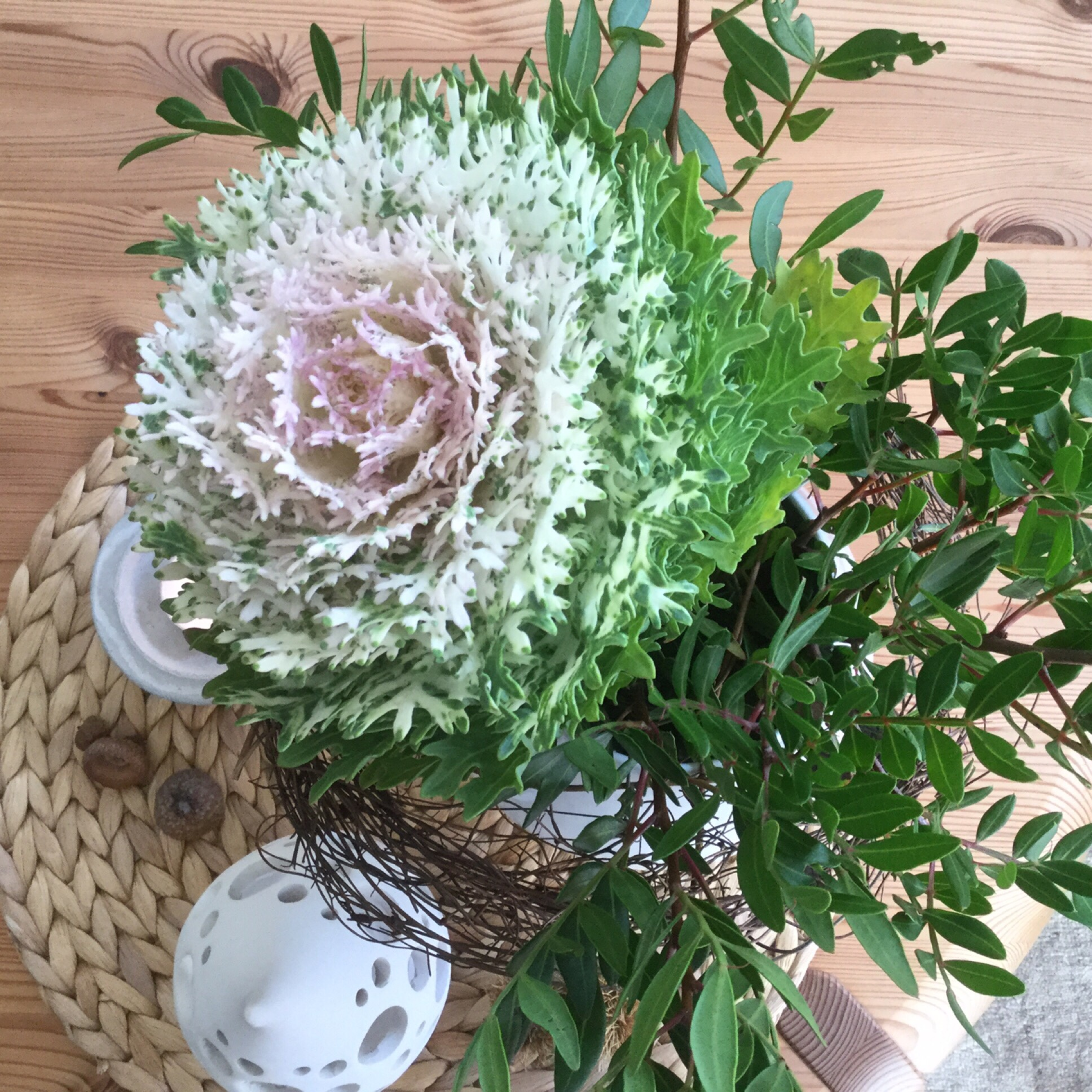 Friday-Flowerday – oder – Heute gibt's Kappes mit Pistazien